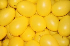 Medium Plastic Egg for Decorating, 11cm
