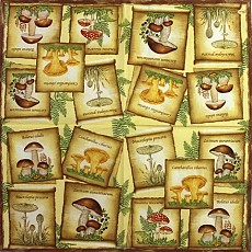 Napkins Lunch 33 x 33cm, Product Code 245