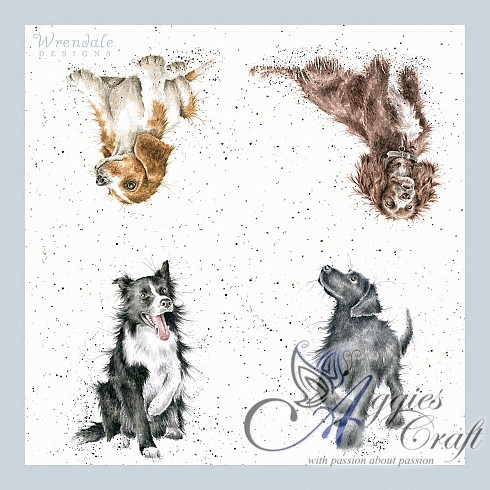 Wrendale Lunch Napkins, 33 x 33cm, DOG